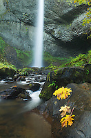 Latourell Falls Columbia River Gorge National Scenic Area Oregon