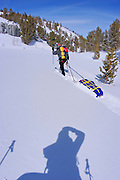 Backcountry skier pulling sled through fresh powder in Little Lakes Valley, Inyo National Forest, Sierra Nevada Mountains, California