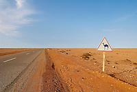 Maroc. Grand Sud. Route de Smara. Ancien Sahara espagnol. // Morocco. South Morocco. Road to Smara. Former Spanish Sahara.