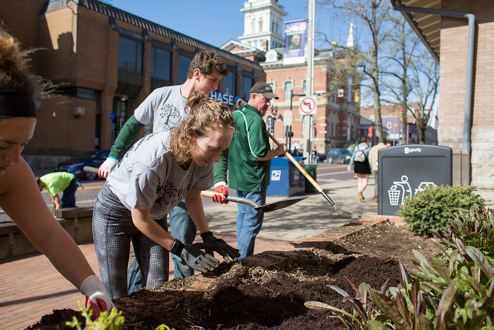 Volunteers dig up weeds and add new plants outside of the City Building during Athens Beautification Day on April 9, 2017.