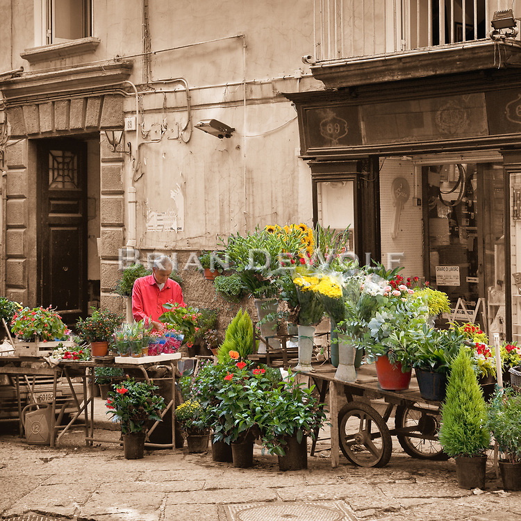 This is an open edition print. Canvas prints have a 2 inch black border so it can be gallery wrapped. The print is made using pigmented inks on museum-grade canvas or watercolor paper. Each print also gets a light coating of lacquer protective spray. Each print is hand signed by Brian DeWolf.  Flower vendor in an alley of Naples, Italy. The area was quite busy with people walking in the streets and alley, but I simply waited to capture the seller by himself concentrating on his arrangements.<br /> Digital capture.