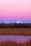 Whitehorse and Three Fingers mountains tower over a wetland on Spencer Island, Everett, Washington. The mountains, capped in winter snow, are prominent peaks in the Cascade mountain range. The peaks are lit by alpenglow, a natural lighting phenomenon that causes mountains to glow after sunset. The Earth's shadow is visible as the dark blue band just above the mountains. The bright red band is known as the Belt of Venus.