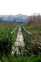 Parte dei bacini presenti nella zona è attraversata da passerelle costruite dalla società dell'acquedotto pugliese. Sulla sfondo sono visibili gli edifici della periferia di Casarano.