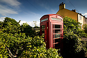 One of very few traditional telephone kiosks left in the Anglesey countryside, this one almost overgrown in Penmon village, East Anglesey.