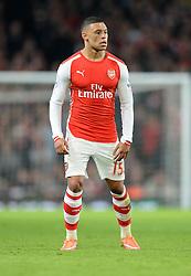 Arsenal's Alex Oxlade-Chamberlain - Photo mandatory by-line: Alex James/JMP - Mobile: 07966 386802 - 22/11/2014 - Sport - Football - London - Emirates Stadium - Arsenal v Manchester United - Barclays Premier League