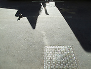 A pigeon walks into the shadow of a tractor trailer stopped at a red light on 9th Avenue in Manhattan, New York City.