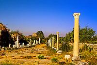 Harbor Street, Ephesus (Efes) archaeological site, Turkey