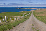 Country road leading through typical landscape in fjord. Vatnsnes. Iceland.