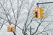 Detail of traffic lights covered in snow during a snowstorm in New York City.
