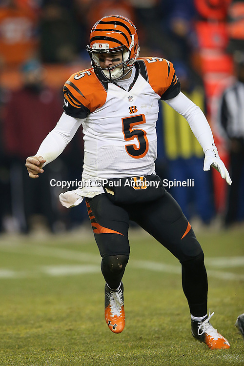 Cincinnati Bengals quarterback AJ McCarron (5) chases after a fumbled snap recovered by Denver Broncos outside linebacker DeMarcus Ware (94) in overtime, clinching a Broncos win during the 2015 NFL week 16 regular season football game against the Cincinnati Bengals on Monday, Dec. 28, 2015 in Denver. The Broncos won the game in overtime 20-17. (©Paul Anthony Spinelli)
