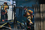 Las Vegas Fire & Rescue work an apartment fire at 1820 East Lewis Ave. which spread to a nearby tree and shed on Thursday, June, 19, 2014.  L.E. Baskow
