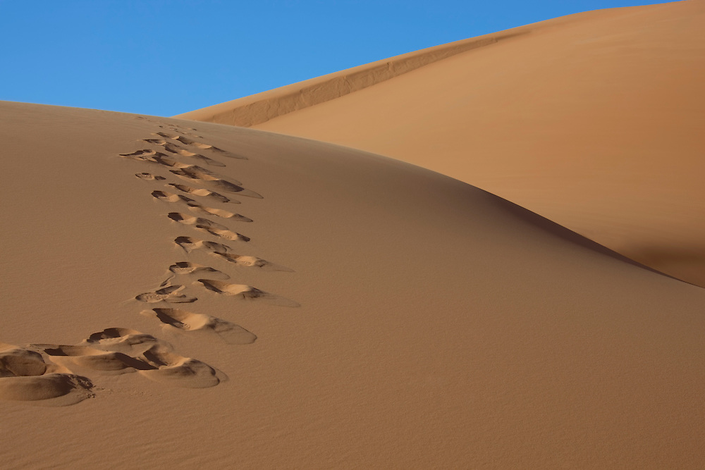 Footprints on a sand dune with clear blue sky at Erg Chebbi, Merzouga, Morocco.
