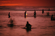 Western Samoans hunting for palolo reef worms at night near Apia, Western Samoa. The rich taste of palolo is enjoyed raw or fried with butter, onions or eggs, or spread on toast. Palolo is the edible portion of a polychaete worm (Eunice viridis) that lives in shallow coral reefs throughout the south central Pacific. Image from the book project Man Eating Bugs: The Art and Science of Eating Insects.