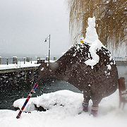 A snow covered kiwi statue in Queenstown after the biggest snow storm in New Zealand in the past 50 years. Queenstown, New Zealand, 16th August 2011. Photo Tim Clayton