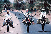 Three men, three donkeys and a bicycle on a road skirting the Sahara Desert in southern Morocco.