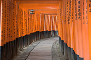 Lantern hanging inside tunnel of torii gates at Fushimi Inari Taisha Shrine Kyoto Kansai Japan