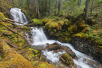 Apogee Falls on Pyramid Creek, Ross Lake National Recreation Area, North Cascades Washington