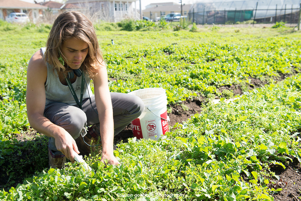 Our School at Blair Grocery is an urban farm and food justice academy in the Lower Ninth Ward of New Orleans, Louisiana. OSBG operates a fully functioning farm in the heart of their neighborhood and employ youth in their community to help them grow food for their community. OSBG is working to transform the narrative of the Lower 9th Ward from one of desolation to one of revitalization and empowerment.