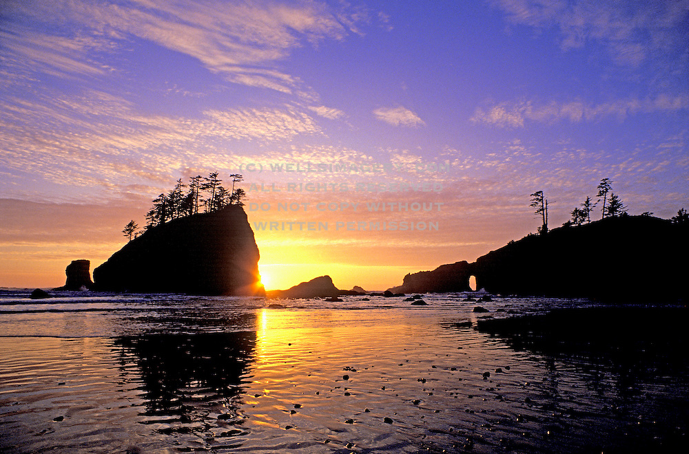 Image of Second Beach at sunset, Olympic National Park, Olympic National Seashore, La Push, Washington, Pacific Northwest