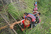 Pupils Climb Vines Down 800-meter Cliff To School