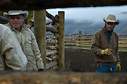 "Ranching Essay from the Mead Ranch in Jackson, Wyoming. The Mead Ranch is one of Jacksons oldest working ranches, and produces ""all natural"" Mead Beef. This essay was shot in the Fall of 2006."