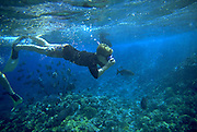 Snorkling, Hawaii, USA<br />