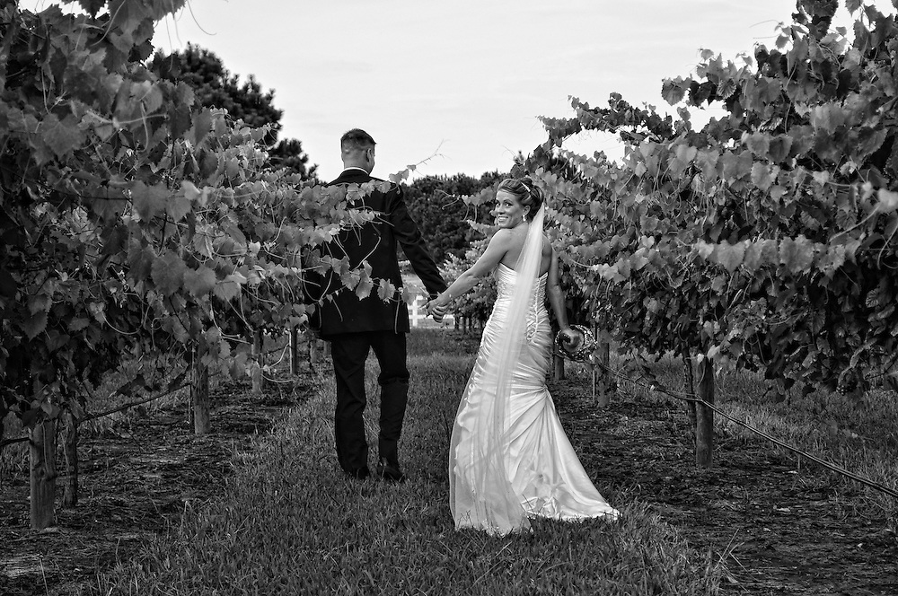 Seth and Amber Wedding | Duplin Winery Photography