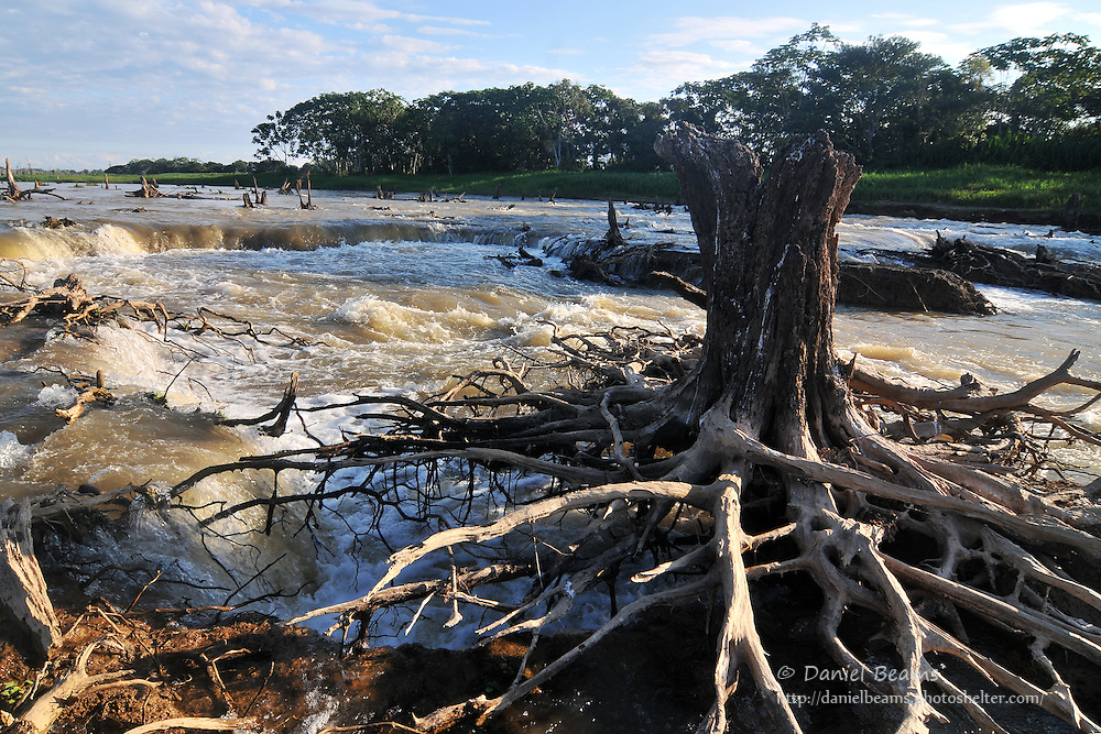 Secure river in the Isiboro-Secure national park, Beni, Bolivia