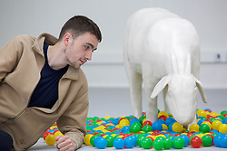 Daniel Howe's goat with plastic balls is among the exhibits by 500 students at Edinburgh College of Art degree show which runs for nine days in June. Pic: Terry Murden @edinburghelitemedia