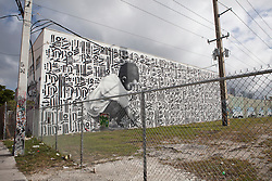 mural in the Wynwood section of Miami, Florida