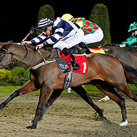Pick A Little and Martin Lane winning the 7.20 race