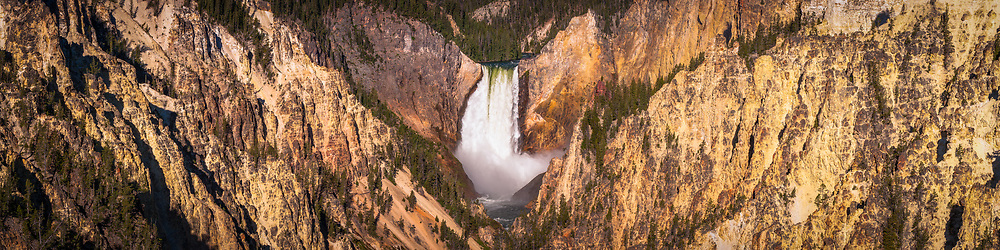 If you look close in a large print you can find an Osprey perched in it's nest overlooking the Lower Falls in Yellowstone National Park. Limited Edition - 75