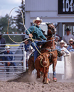 Paul Teirney calf roping at the 2000 Cheyenne Frontier Days on July 22, 2000.