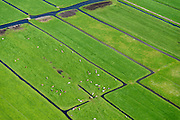 Nederland, Noord-Holland, Gemeente Ouder-Amstel, 09-04-2014; Amstelland, Polder de Rondehoep (ook Polder de Ronde Hoep), een van de grootste onbebouwde weidegebieden van de Randstad met karakteristiek stervormig kavelpatroon. Dit slotenpatroon van gerende verkaveling is ontstaan ten tijde van de ontginning in de middeleeuwen. <br /> The Polder Rondehoep (or Polder Round Hoep), one of the largest undeveloped pasture area's in the Randstad with characteristic star-shaped pattern. This pattern is the result of the extraction during the Middle Ages.<br /> luchtfoto (toeslag op standard tarieven);<br /> aerial photo (additional fee required);<br /> copyright foto/photo Siebe Swart
