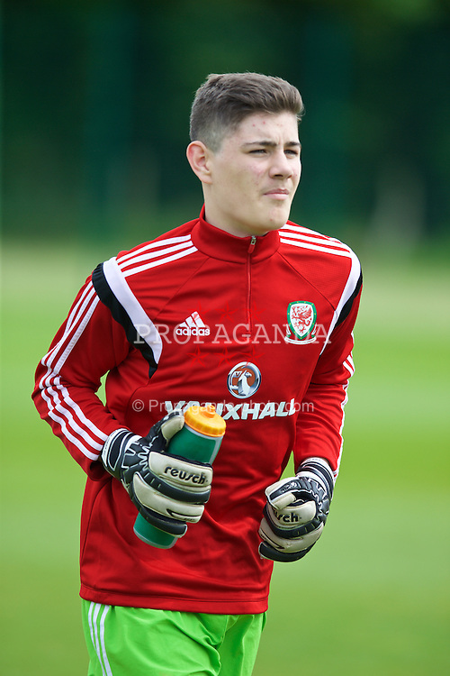 NEWPORT, WALES - Wednesday, May 27, 2015: Regional Development Boys' goalkeeper Scott Reed during the Welsh Football Trust Cymru Cup 2015 at Dragon Park. (Pic by David Rawcliffe/Propaganda)