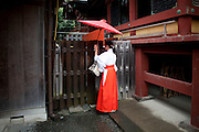 KAMAKURA, JAPAN, 16 SEPTEMBER - A Miko walks under the rain with a traditionnal red umbrella in the Yasubame matsuri. A Miko, Shrine Maide or Shaman woman, is a young woman who assist  the shrine, perform ceremonial dance - Miko-mai or Miko-kagura, offer Omikuji fortune tell. A Miko wears a pair of Hakama - long divided trousers, a white Haori - Kimono Jacket symbol of purity. In the  Tsurugaoka Hachimangu  the most important temple of Kamakura, The miko wears sometime purpple Hakama - september 2012