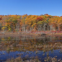 Scenic marshland photography of this beautiful New England fall foliage scenery in Connecticut near East Haddam. Connecticut photography pictures are available as museum quality photography prints, canvas prints, acrylic prints or metal prints. Prints may be framed and matted to the individual liking and decorating needs:<br />