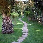 Path, Marrakech