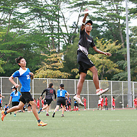 2016 POL-ITE Ultimate Championship: NP vs ITE