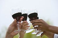 Group of friends toasting outdoors, close-up