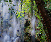 6107-1001 ~ Copyright:  George H. H. Huey ~ Waterfall.  Sierra Madre Occidental.  Nuevo Leon, Mexico.