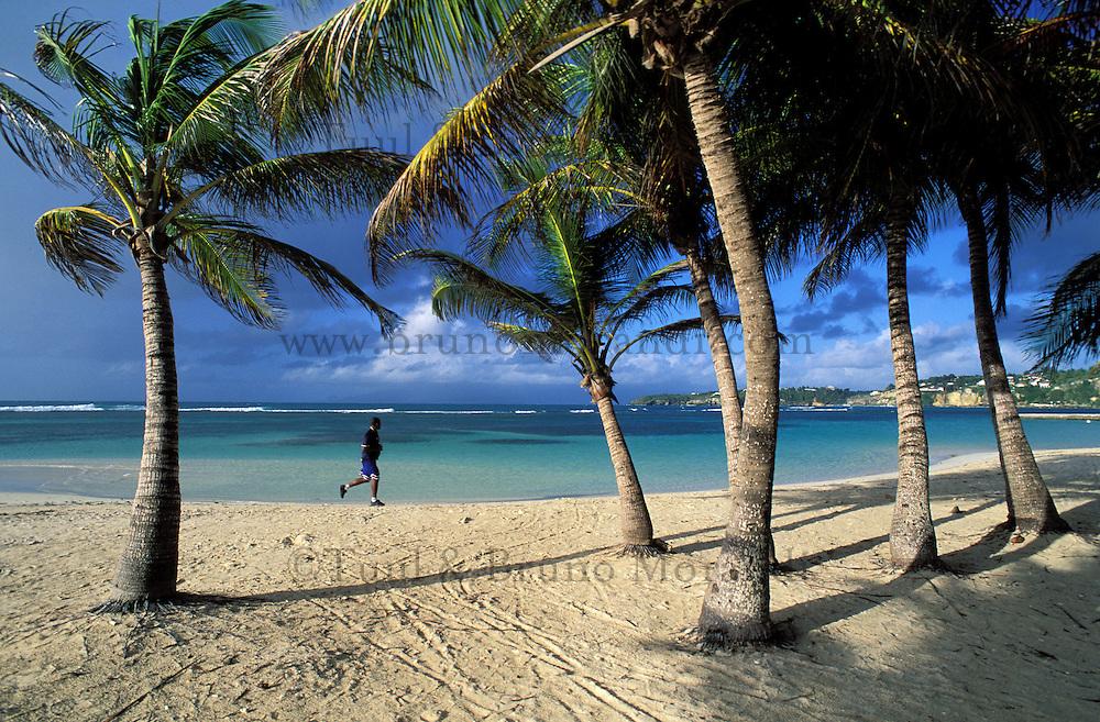 France - Département d'Outre mer de la Guadeloupe (DOM) - Grande Terre - Sainte Anne - Plage de la Caravelle