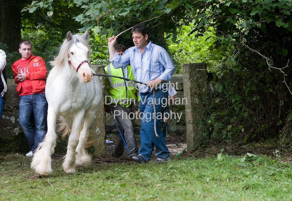 15/8/2008.Michael Connor from Castledermot County Kildare pictured at the Borris Horse Fair in County Carlow yesteday..Picture Dylan Vaughan