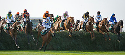 LIVERPOOL, ENGLAND - Saturday, April 9, 2011: Hello Bud ridden by Sam Twiston-Davies leads the field over the first fence of The Grand National on Grand National Day, Day 3 of the 2011 Grand National meeting at Aintree Racecourse. (Photo by David Tickle/Propaganda)