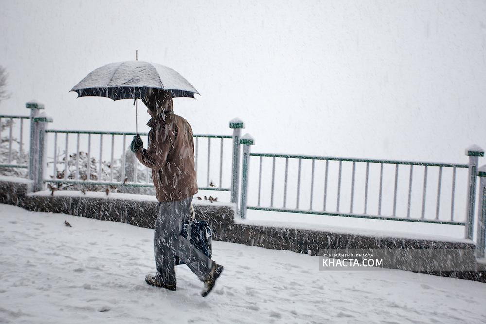 A man with an umbrella walking through the snow storm in Shimla