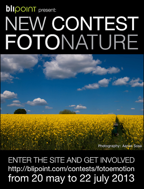 Imagen del Concurso FOTONATURE de Blipoint.<br /> 2013, A nivel mundial