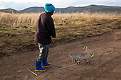 Lesotho Shortlist