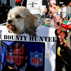 Jan 27, 2013; New Orleans, LA, USA; Scenes from  the Mystic Krewe of Barkus dog parade through the streets of the French Quarter. Mandatory Credit: Derick E. Hingle-USA TODAY Sports