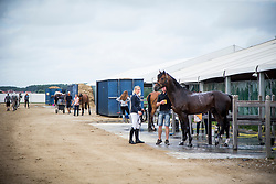Mason Emily, GBR, Lucky Boy<br /> Knokke 2018 Summer Circuit week 2<br /> © Hippo Foto - Sharon Vandeput<br /> 13/07/18