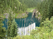 Amazing Sunken Forest Of Lake Kaindy<br /> <br /> Kaindy Lake is a 400 meter long lake in Kazakhstan &iacute;s portion of the Tian Shan Mountains located 129 km from the city of Almaty. The lake was created after an earthquake in 1911 that triggered a large landslide blocking the gorge and forming a natural dam. Subsequently, rainwater filled the valley and created the lake.<br /> <br /> The lake is famous for its scenic beauty particularly the submerged forest and the imposing trunks of spruce trees that rises out of the lake water. Above water, the sunken trees appear as large masts from lost ghost ships, or perhaps the spears of a mysterious army hiding and waiting for the right time to emerge.<br /> <br /> The water is so cold (even in summer the temperature does not exceed 6 degrees) that the great pines still remain on the trees, even 100 years later. Because of the clear mountain water, you can see deep into the depths of the lake. In winter, the surface of the lake freezes over and during this time, Lake Kaindy becomes a great spot for trout fishing and ice diving.<br /> &copy;kazakhstan Travel/Exclusivepix Media